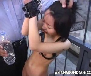Asian bitch roped up..